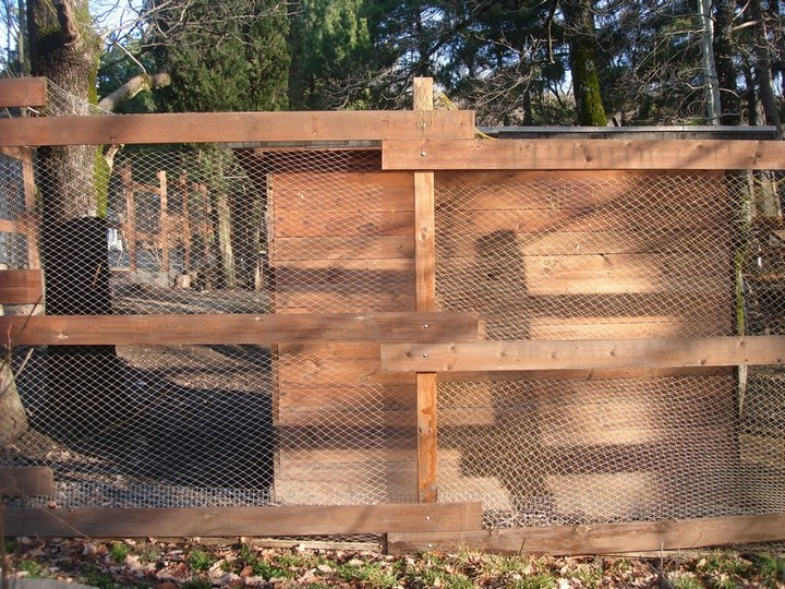 Вольеры для фазанов фото 286